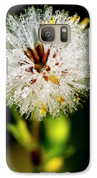 Galaxy Case featuring the photograph Winter Dandelion by Pedro Cardona
