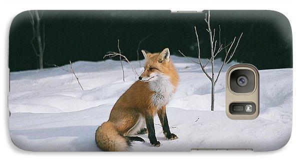 Galaxy Case featuring the photograph Winter Fox by David Porteus