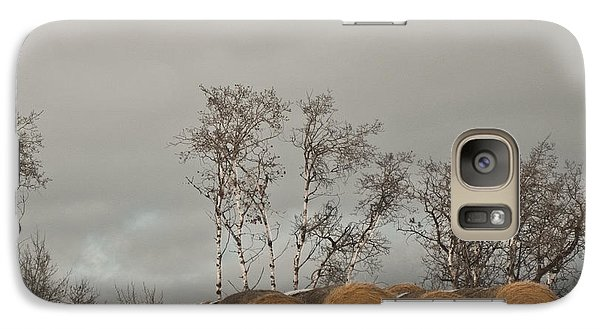 Galaxy Case featuring the photograph Winter Gold by Sandi Mikuse