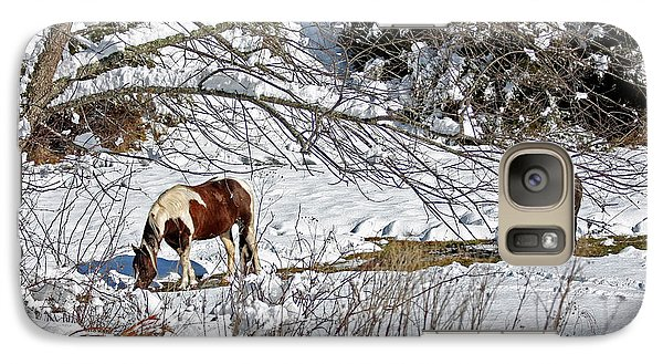 Galaxy Case featuring the photograph Winter Graze by Denise Romano