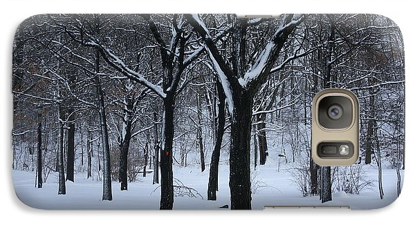 Galaxy Case featuring the photograph Winter In The Park by Dora Sofia Caputo Photographic Art and Design