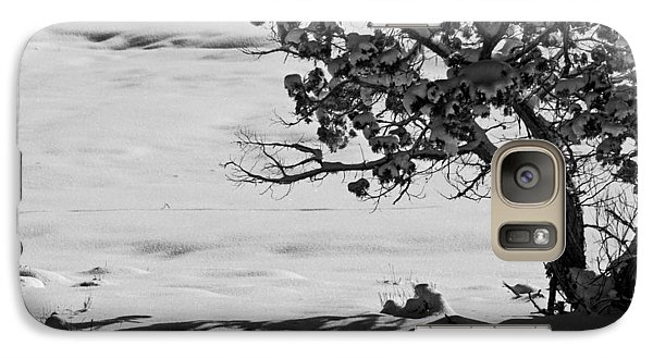 Galaxy Case featuring the photograph Winter Juniper  by Eric Rundle