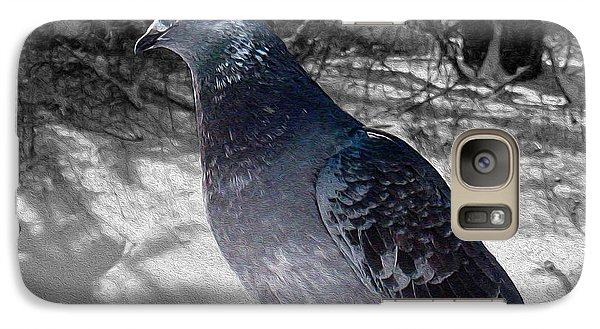Galaxy Case featuring the photograph Winter Pigeon by Nina Silver