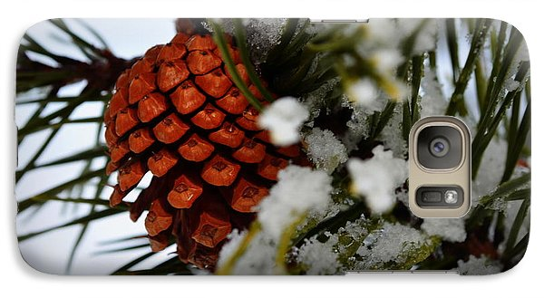 Galaxy Case featuring the photograph Winter Pine by Guy Hoffman