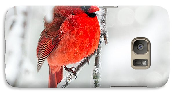 Galaxy Case featuring the photograph Winter Red by Jaki Miller