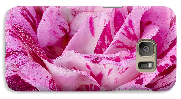 Galaxy Case featuring the photograph Winter Rose  by Heidi Smith