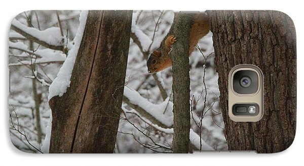 Winter Squirrel Galaxy S7 Case by Dan Sproul