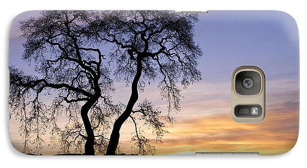 Galaxy Case featuring the photograph Winter Sunrise With Tree Silhouette by Priya Ghose