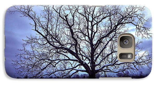 Galaxy Case featuring the photograph Winter Twilight Tree by Jaki Miller