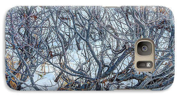 Galaxy Case featuring the photograph Winter Willow by Jan Davies