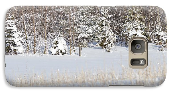 Galaxy Case featuring the photograph Winter Wonderland by Dacia Doroff