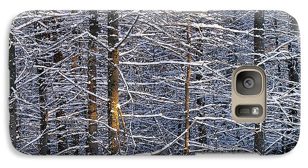 Galaxy Case featuring the photograph Winter Woods by Alan L Graham