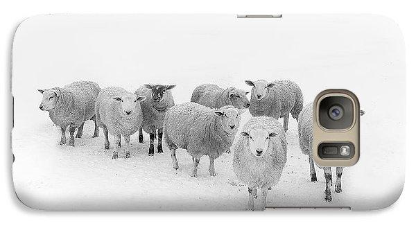 Rural Scenes Galaxy S7 Case - Winter Woollies by Janet Burdon