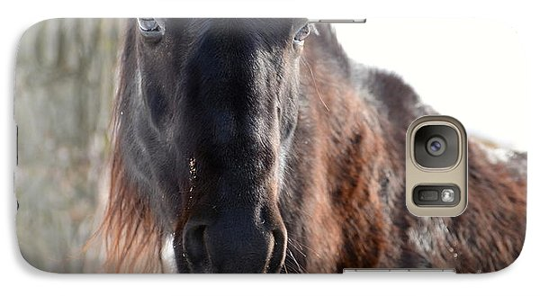 Galaxy Case featuring the photograph Winter's Whiskers by Linda Mishler