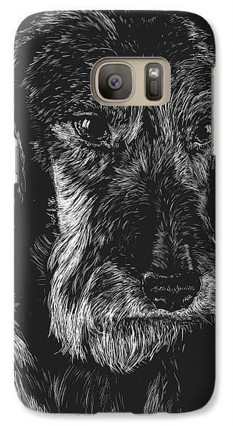 Galaxy Case featuring the drawing Wire Haired Dachshund by Rachel Hames