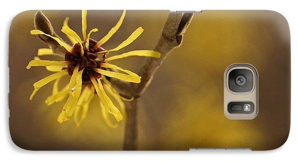 Galaxy Case featuring the photograph Witch Hazel by Inge Riis McDonald