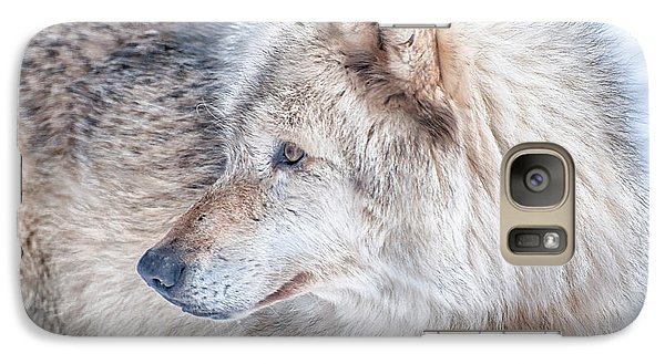 Galaxy Case featuring the photograph Wolf In Disguise by Bianca Nadeau