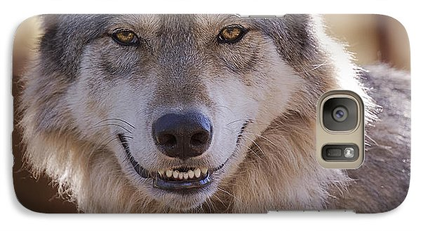 Galaxy Case featuring the photograph Wolf's Smile  by Brian Cross