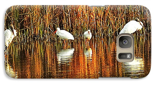 Wood Storks And 2 Ibis Galaxy S7 Case by Bill Barber