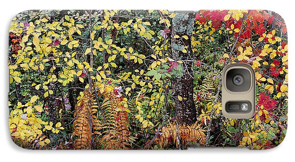 Galaxy Case featuring the photograph Woodland Tapestry by Alan L Graham
