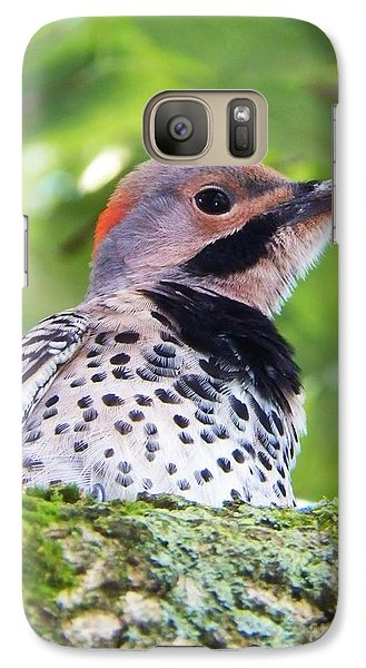 Galaxy Case featuring the photograph Woodpecker by Judy Via-Wolff