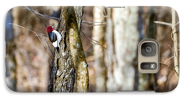 Galaxy Case featuring the photograph Woody by Sennie Pierson