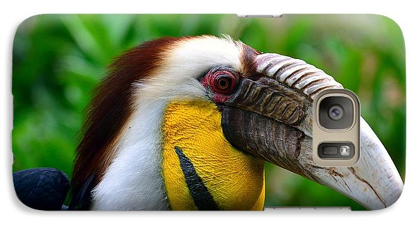 Galaxy Case featuring the photograph Wreathed Hornbill by Lisa L Silva
