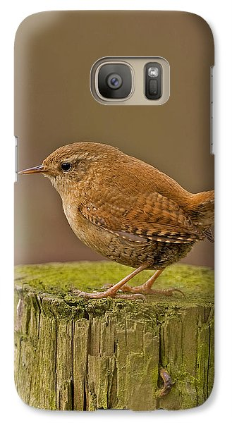Galaxy Case featuring the photograph Wren by Paul Scoullar