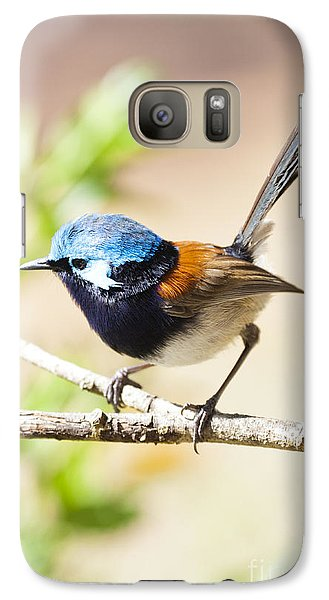 Galaxy Case featuring the photograph Wren by Serene Maisey