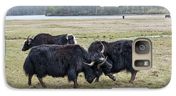 Yaks Fighting In Potatso National Park Galaxy Case by Tony Camacho