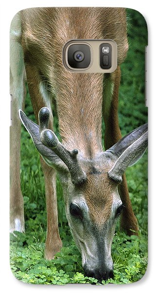 Galaxy Case featuring the photograph Yearling Buck In The Clover by Gene Walls