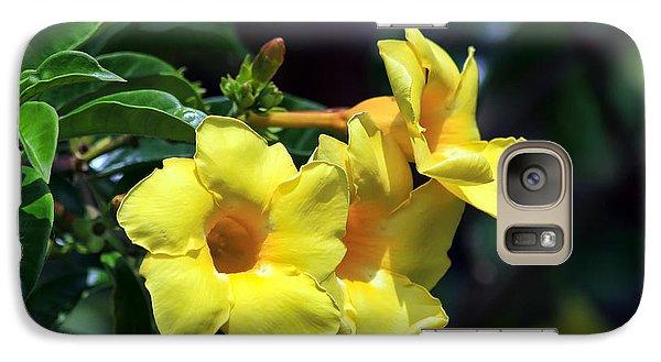 Galaxy Case featuring the photograph Yellow Allamanda by Teresa Zieba