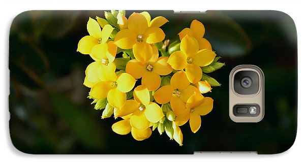 Galaxy Case featuring the photograph Yellow Allegria  by Ramona Matei