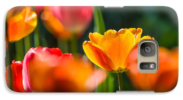 Galaxy Case featuring the photograph Yellow And Red by Trevor Chriss