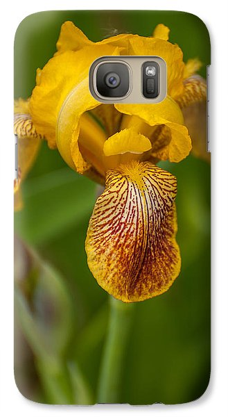 Galaxy Case featuring the photograph Yellow Bearded Iris by Brenda Jacobs