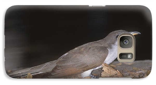 Yellow-billed Cuckoo Galaxy S7 Case by Gregory G. Dimijian, M.D.
