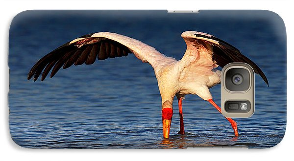 Stork Galaxy S7 Case - Yellow-billed Stork Hunting For Food by Johan Swanepoel
