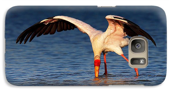 Yellow-billed Stork Hunting For Food Galaxy Case by Johan Swanepoel
