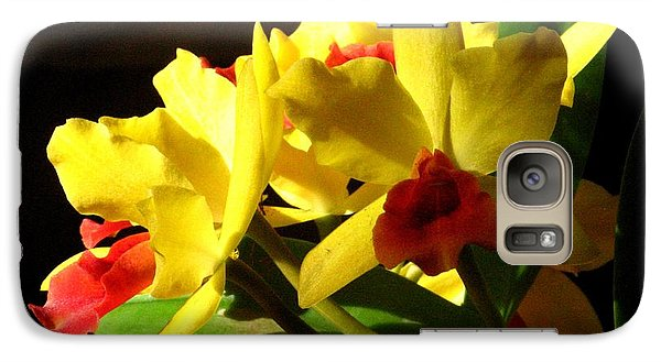 Galaxy Case featuring the photograph Yellow Cattleya Orchid by Alfred Ng