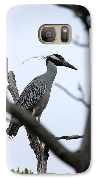 Galaxy Case featuring the photograph Yellow Crowned Night Heron by Marta Alfred