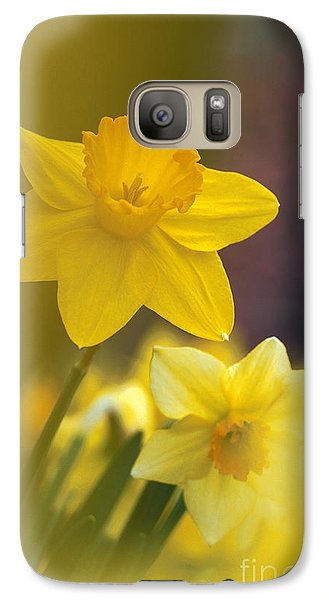 Galaxy Case featuring the photograph Yellow Daffodils  by Chris Scroggins