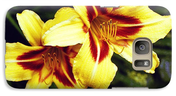 Galaxy Case featuring the photograph Yellow Daylilies  by Tom Brickhouse