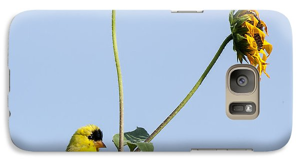 Galaxy Case featuring the photograph Yellow Delight 2 by David Lester