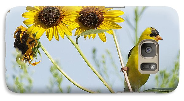 Galaxy Case featuring the photograph Yellow Delight by David Lester