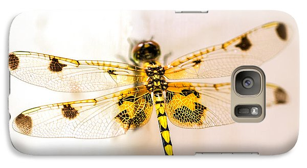 Yellow Dragonfly Pantala Flavescens Galaxy S7 Case by Iris Richardson