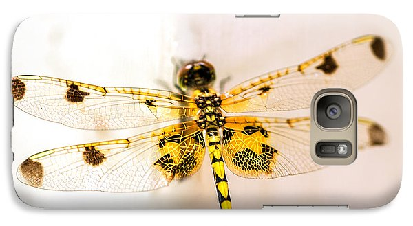 Dragon Galaxy S7 Case - Yellow Dragonfly Pantala Flavescens by Iris Richardson