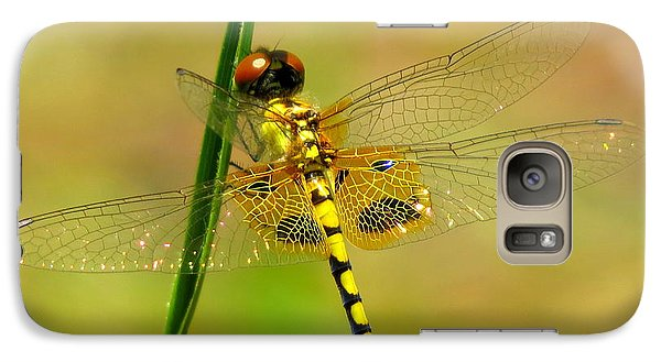 Galaxy Case featuring the photograph Yellow Dragonfly by Phyllis Beiser