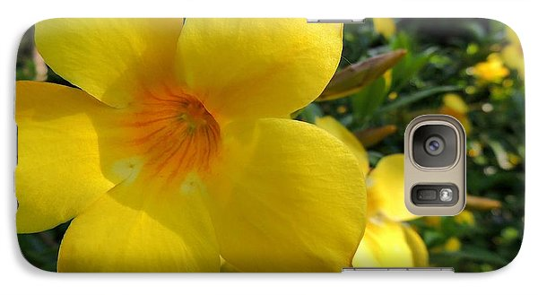 Galaxy Case featuring the photograph Yellow Flower by Kristine Merc