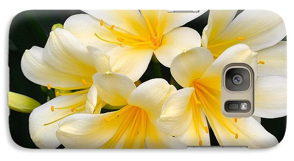 Galaxy Case featuring the photograph Clivia Yellow Flowers by Jeannie Rhode