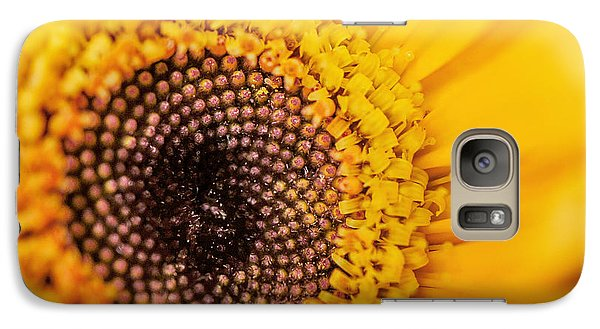 Galaxy Case featuring the photograph Yellow Gerbera Squared by TK Goforth